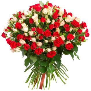 Розы Кустовые микс 3